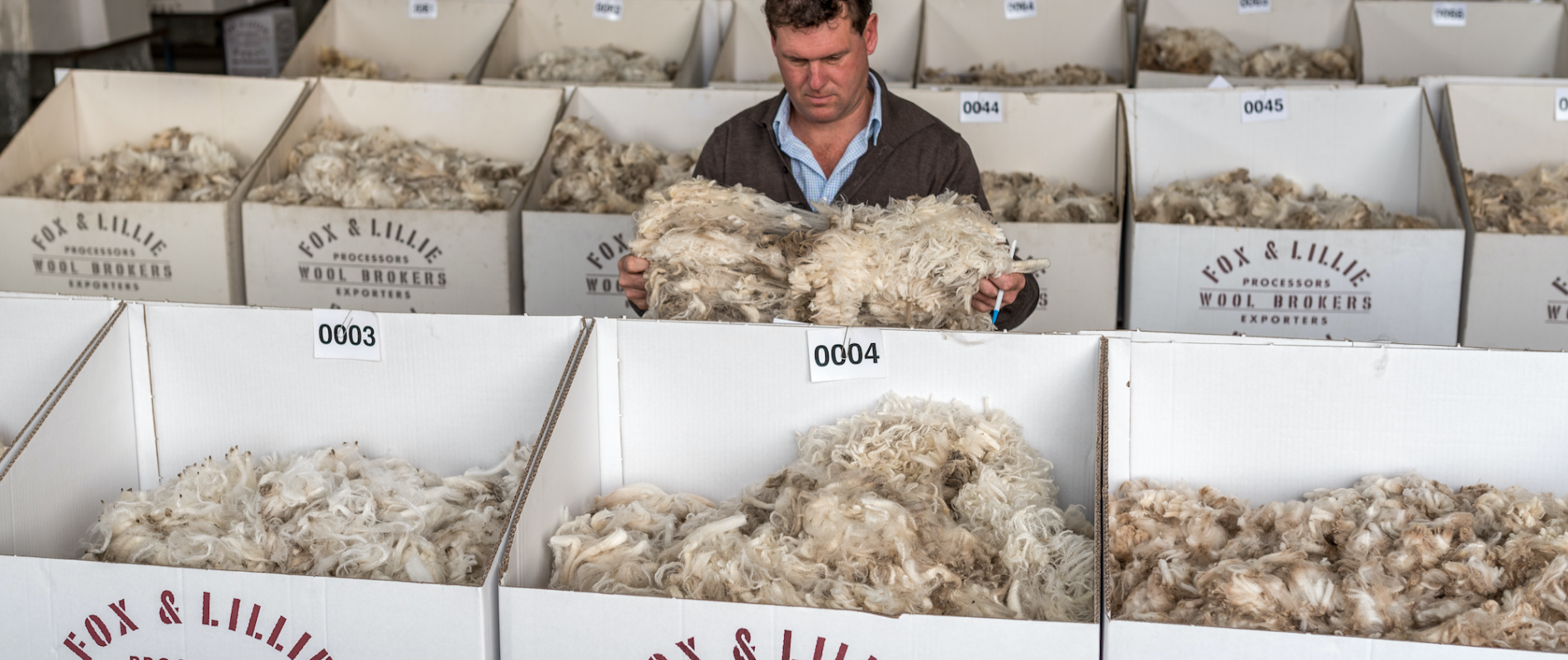 Wool Trading & Export